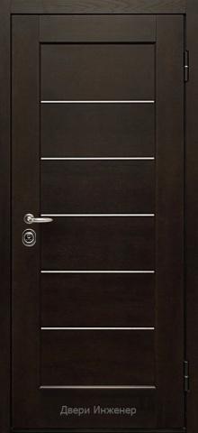 Дверь с молдингом DR191