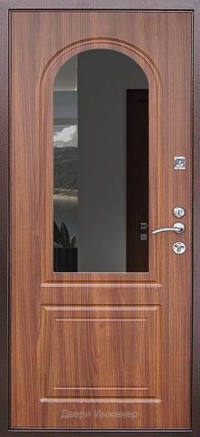 Дверь с ковкой DR270