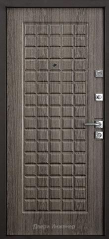 Порошковая дверь DR215